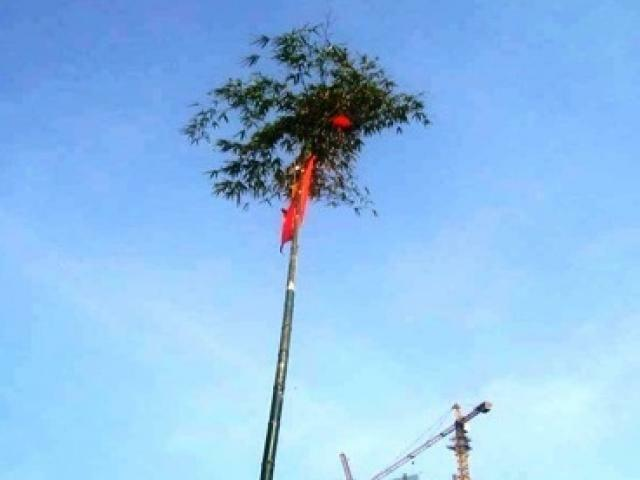 Trồng cây nêu chuẩn bị đón Tết, 3 người bị điện giật thương vong
