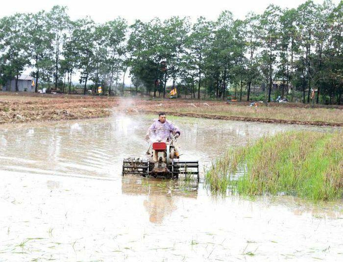 Gần 71% diện tích đã có nước gieo cấy vụ Đông Xuân