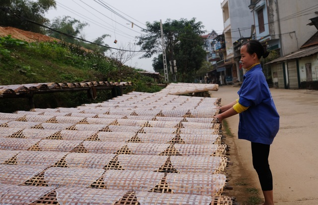 Nhộn nhịp làng bánh đa nem nổi tiếng xứ Thanh ngày cận Tết