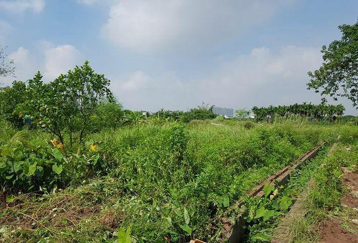 Hoàn thiện Thông tư hướng dẫn lập, điều chỉnh quy hoạch, kế hoạch sử dụng đất