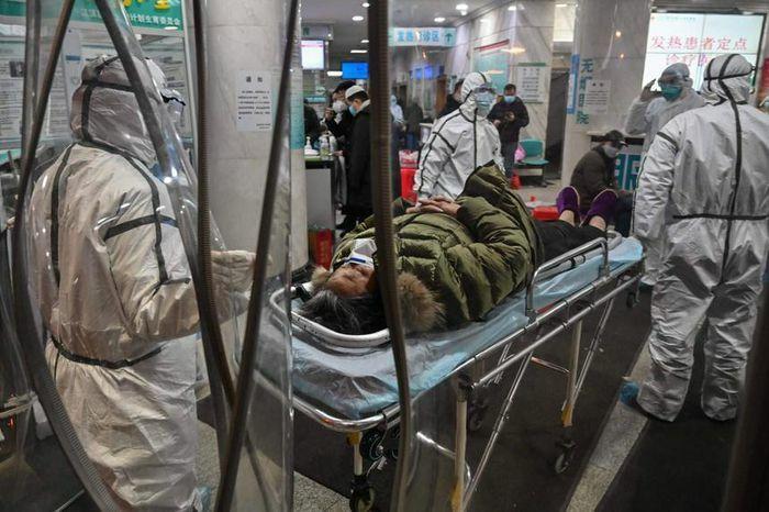 Nhóm điều tra WHO đến chợ hải sản Hoa Nam ở Vũ Hán