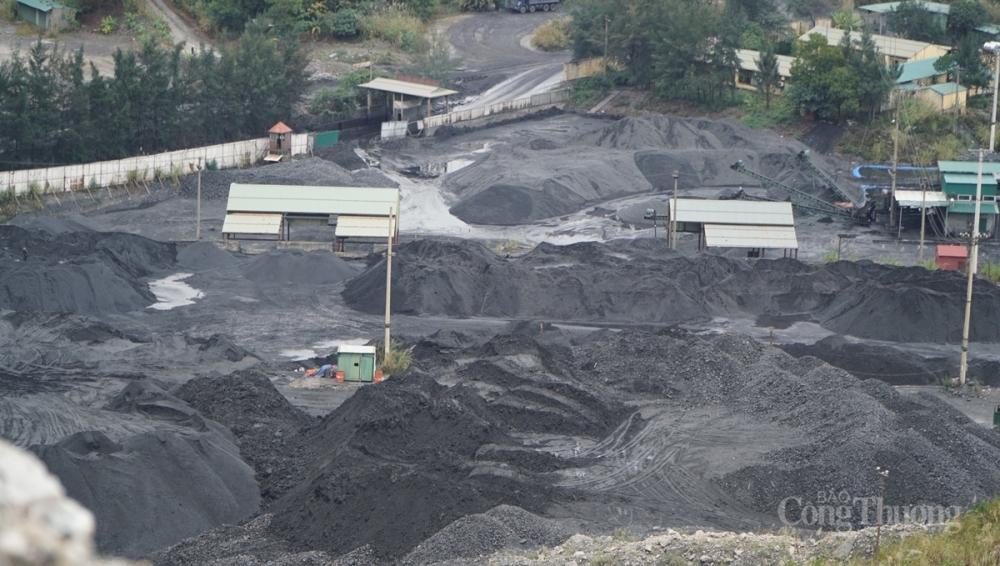 Quảng Ninh: Triệt phá đường dây khai thác than trái phép với quy mô lớn