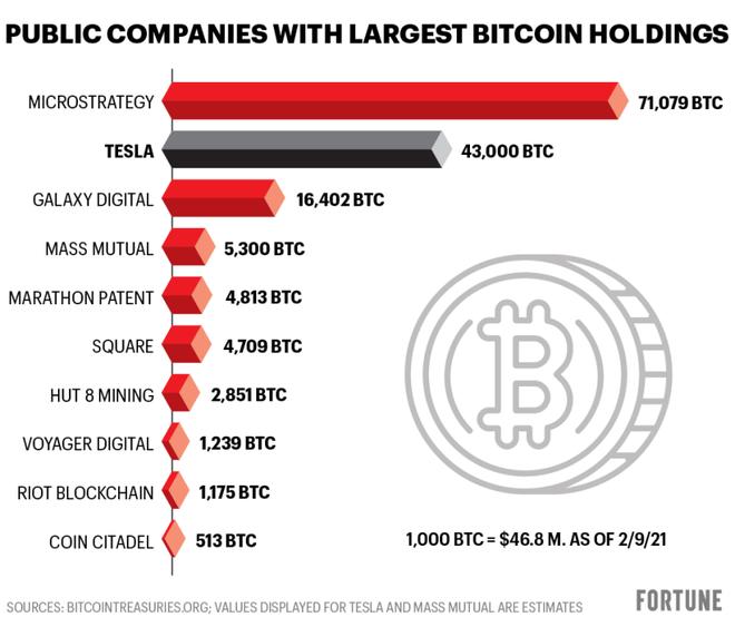 """Không phải Tesla, đây mới là """"cá mập"""" đang nắm giữ lượng Bitcoin nhiều nhất trên thế giới"""