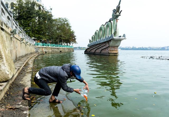 """Người phụ nữ thả 3 con cá chép nặng gần 3kg xuống Hồ Tây tiễn ông Công, ông Táo """"về trời sớm"""""""