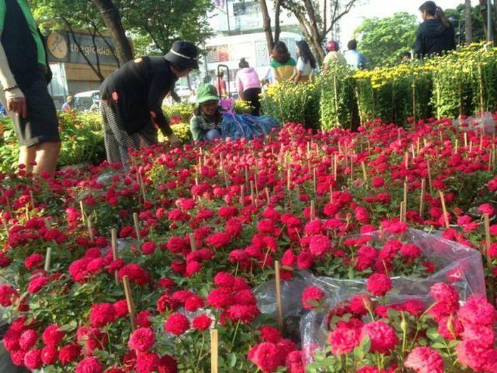TPHCM kêu gọi người dân giải cứu hoa Tết