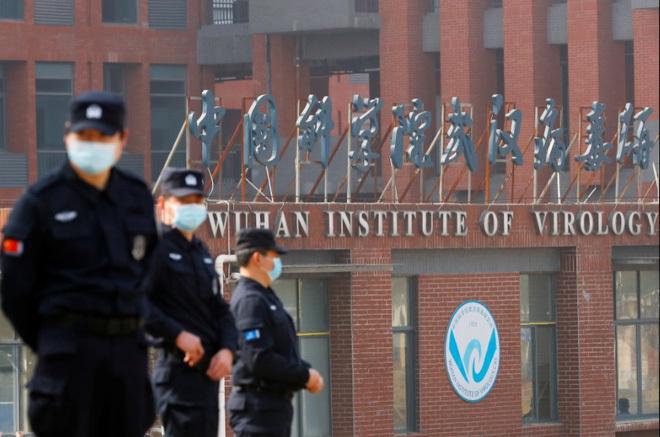 """Chuyên gia WHO gặp nữ """"Người Dơi"""" Trung Quốc, quan niệm trước đây về COVID-19 cũng thay đổi"""