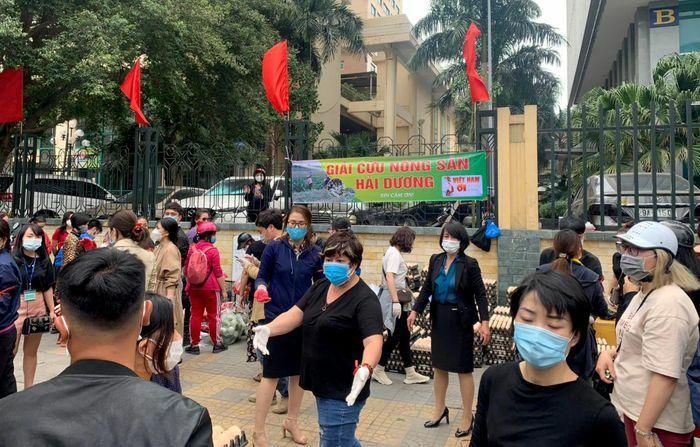 """Người dân Hà Nội xếp hàng """"giải cứu"""" nông sản Hải Dương"""