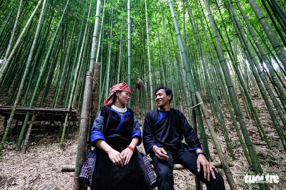 Giữ rừng trúc hoang sơ như tiên cảnh, đón du khách để đổi đời dân bản