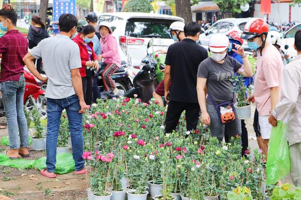 ẢNH: Sau khi tiểu thương ở Sài Gòn vứt bỏ hoa ế, nhiều người dân tranh thủ đến xin đất, lượm hoa mang về trưa 30 Tết