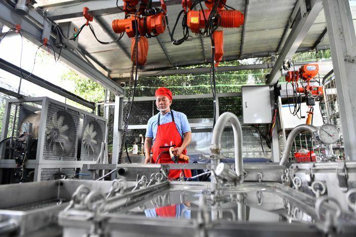 Dây chuyền gói bánh chưng Tết bằng máy hơn 3 tỷ đồng
