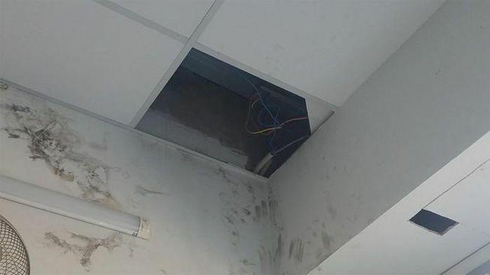 Trộm đục mái cửa hàng Điện Máy Xanh trộm điện thoại