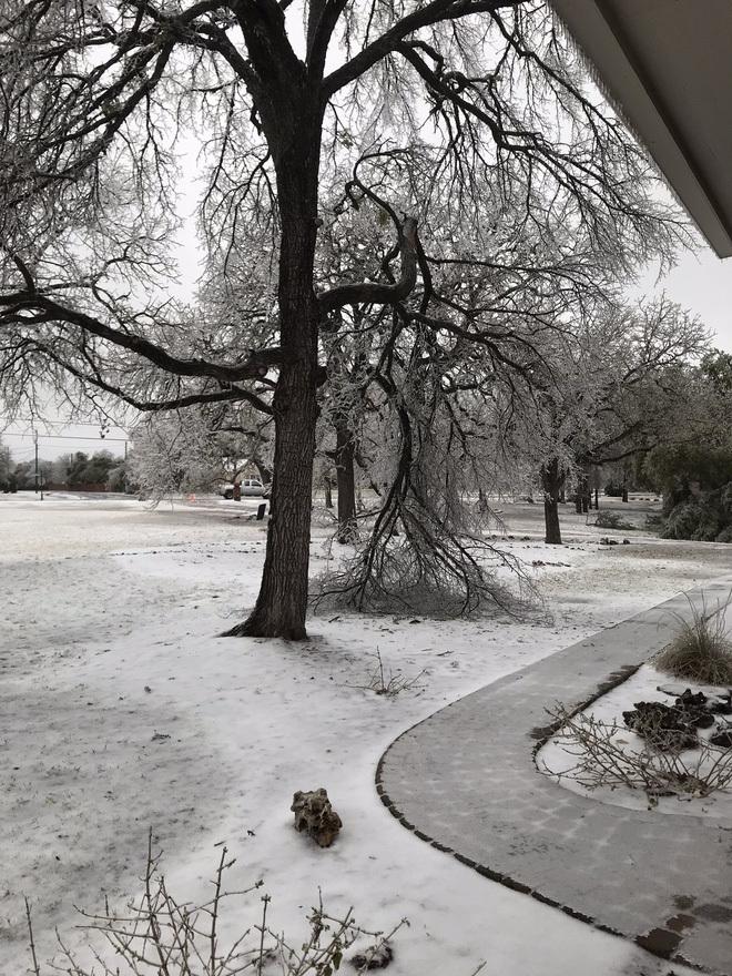 Hệ thống pin Powerwall của Tesla là cứu tinh của người dân Texas giữa thời tiết giá lạnh
