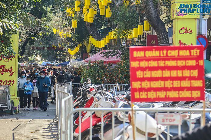 Chợ hoa Hàng Lược chiều 29 Tết: Khách đến xem nườm nượp nhưng ít người mua