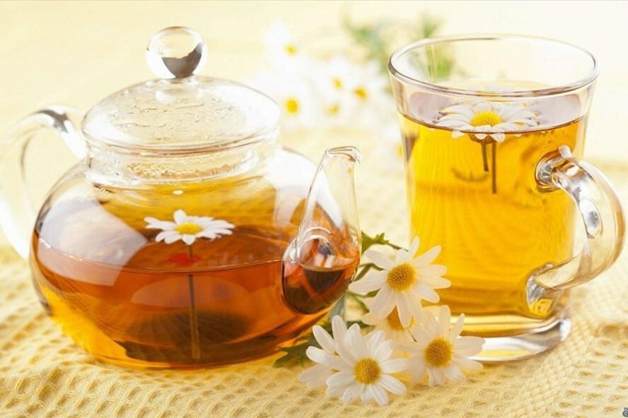 Uống nhiều trà hoa cúc có tốt không?