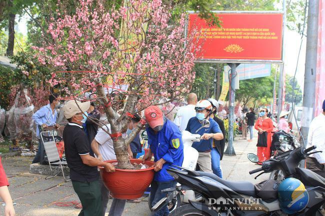 TP.HCM: Hoa đào bất ngờ bán chạy, nhà vườn, thương lái vui mừng, tính đổi vé bay về quê sớm ăn Tết