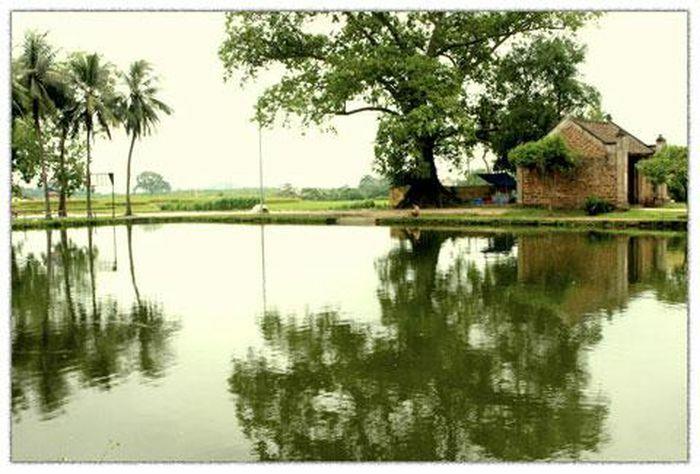 Lệ làng phải dưới phép nước