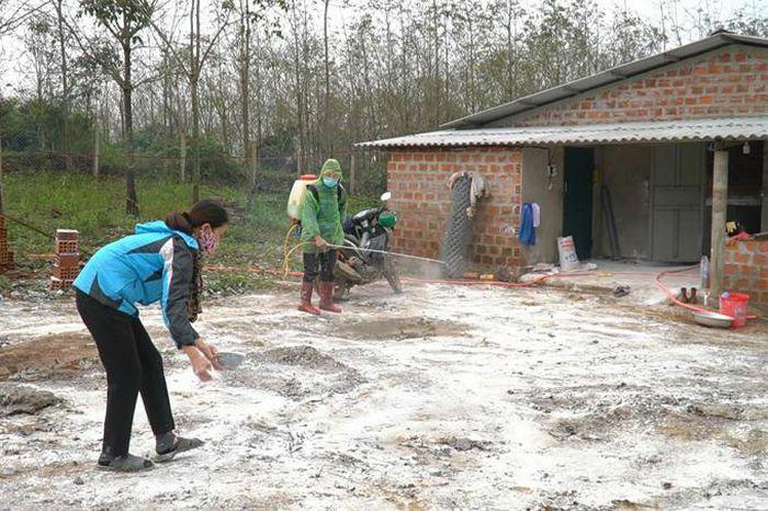 Quảng Trị công bố hết dịch tả lợn Châu Phi tại xã Cam Nghĩa