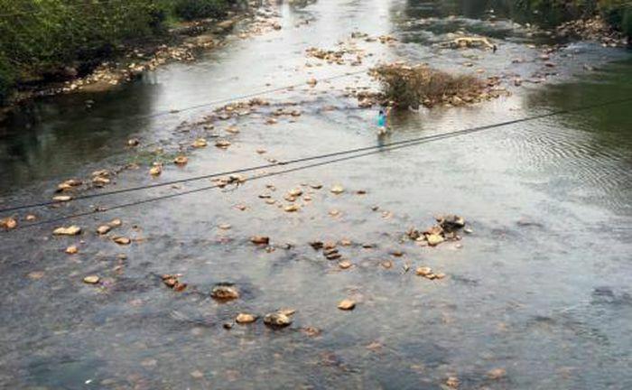 Thủy điện tích nước chạy thử, sông Cầu trơ đáy