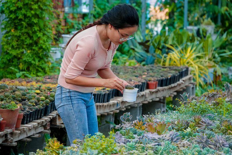 Khởi nghiệp từ 700.000 đồng, 9X sở hữu vườn xương rồng, sen đá hơn 100 giống
