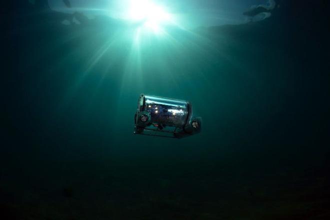 Phân cá có thể sẽ trở thành nguồn năng lượng mới cho robot hoạt động dưới nước