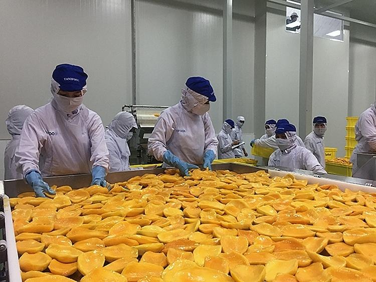 Australia tăng nhập khẩu rau quả chế biến từ Việt Nam