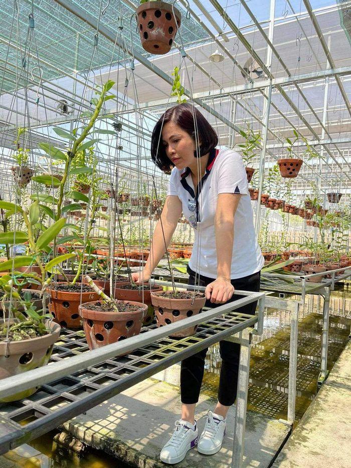 Từ bỏ kinh doanh, nghệ nhân Thủy Royal rẽ hướng chinh phục hoa lan