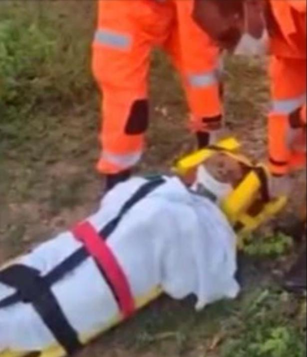 Bà cụ 76 tuổi rơi xuống hố sâu suốt 8 ngày, kêu cứu chẳng ai nghe nhưng vẫn sống sót thần kỳ nhờ thứ này