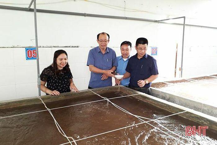 Quản lý chất lượng con giống – đảm bảo vụ tôm xuân hè tại Hà Tĩnh thắng lợi