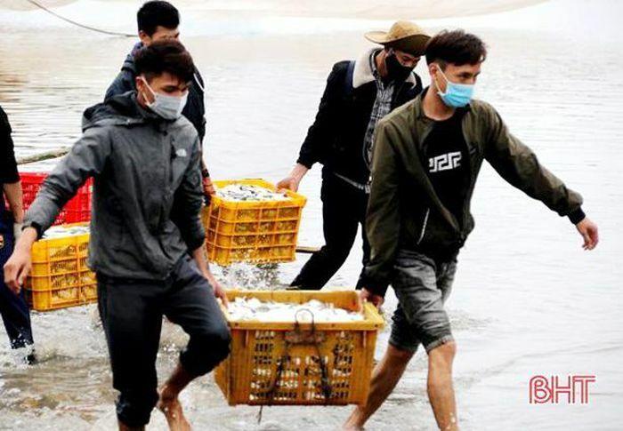 """Ngư dân Hà Tĩnh thu cả trăm triệu đồng mỗi chuyến ra khơi """"săn"""" cá đù"""