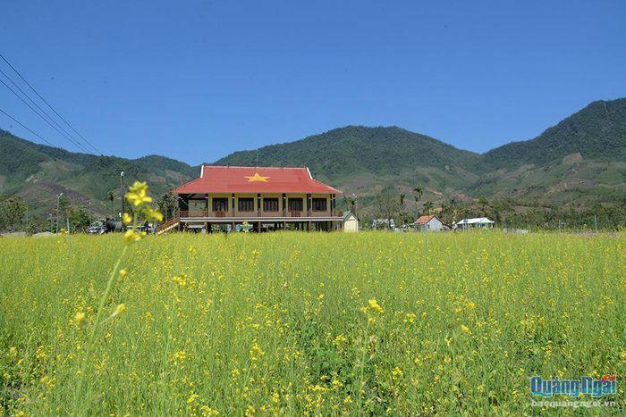 Check-in vườn hoa rực rỡ giữa núi rừng Thọ An