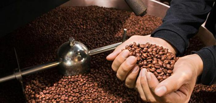 Giá cà phê hôm nay 21/3: Tuần này giảm 200 – 300 đồng