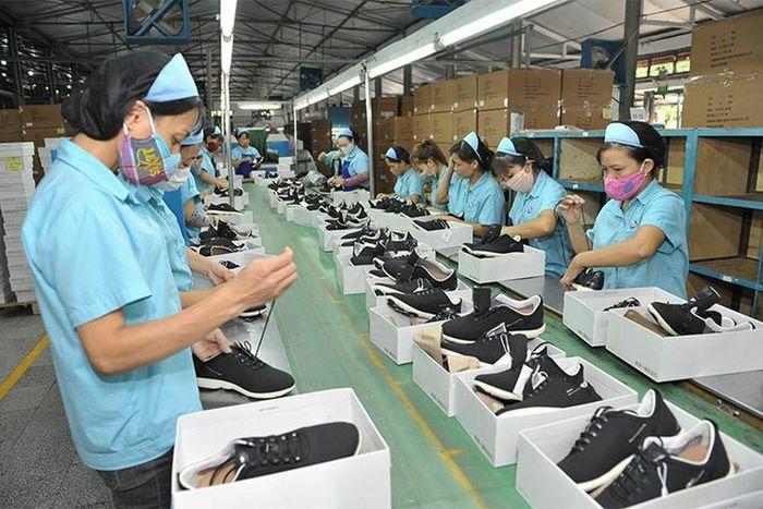 Quy định xuất xứ ưu đãi thuế quan phổ cập GSP của một số đối tác FTA với Việt Nam
