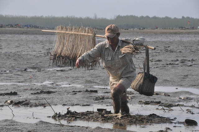 Người đàn ông 30 năm lội bùn lầy săn cá thòi lòi