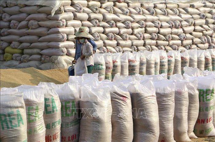 Bảo đảm công bằng trong đấu thầu mua gạo dự trữ quốc gia