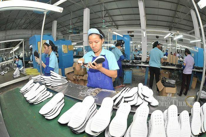 Đan Mạch ra sắc lệnh quản lý ghi dấu giày dép và ghi nhãn các sản phẩm dệt