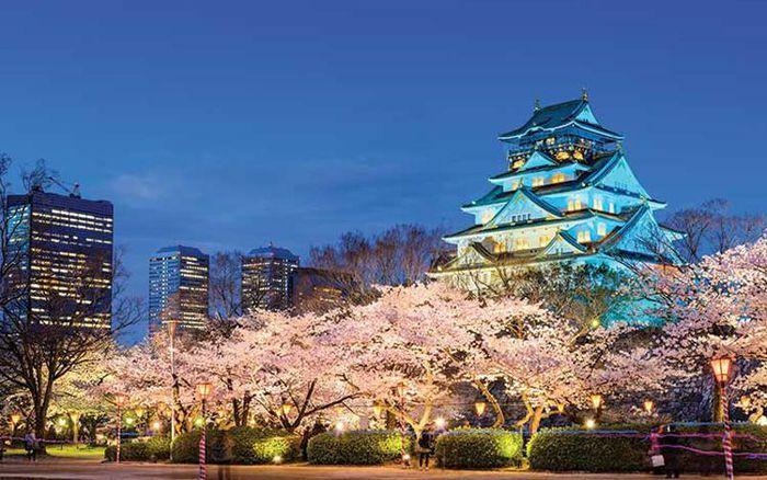 Cẩm nang đầu tiên phục vụ du lịch Nhật Bản tự túc