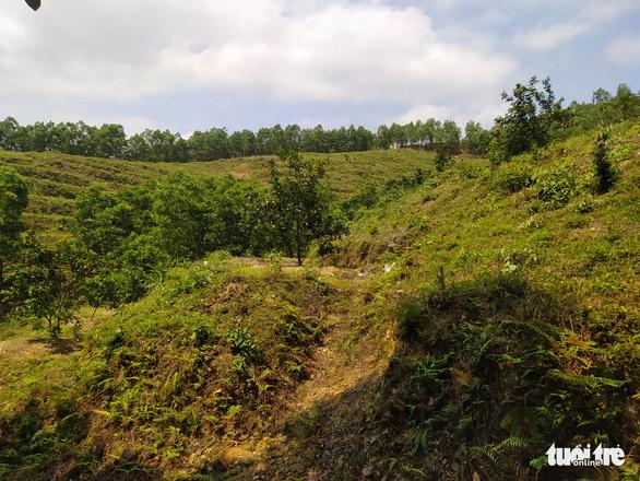 Vụ giao, 'mượn' đất rừng sai quy định ở Hà Tĩnh: Kỷ luật nhiều cán bộ xã