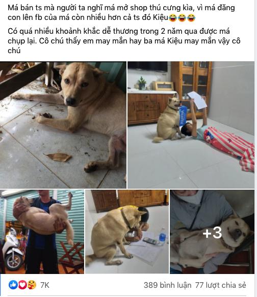 """""""Lịm tim"""" trước vẻ dễ thương của chú chó nhỏ sau 2 năm được nhận nuôi"""