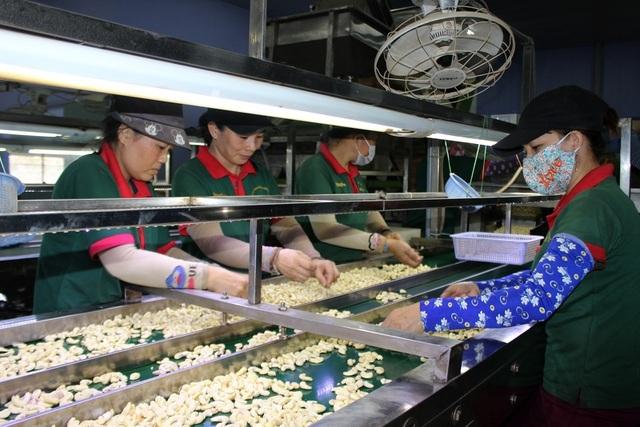 Trong 5 năm, Phú Yên giải quyết việc làm cho hơn 120.000 lao động