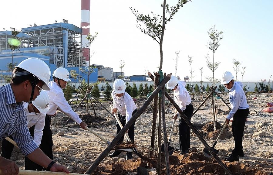 EVNGENCO3 hưởng ứng phong trào Tết trồng cây 2021
