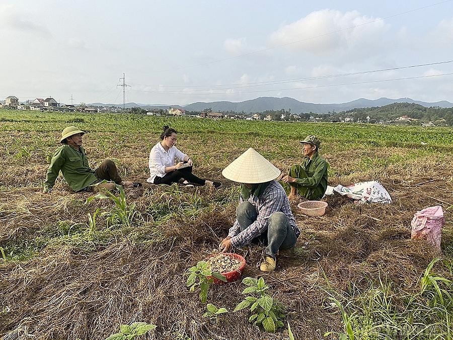 Nghệ An: Hành tăm rớt giá còn 13.000 đồng/kg vẫn 'bí' đầu ra
