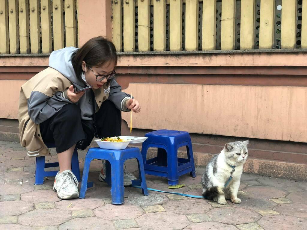 Chú mèo tỏ thái độ 'hờn dỗi cả thế giới' khi 'con sen' 'ăn mảnh' một mình, nhìn biểu cảm cute muốn xỉu!