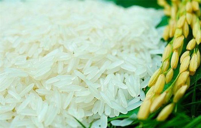 Tạo vị thế vững chắc cho hạt gạo Việt