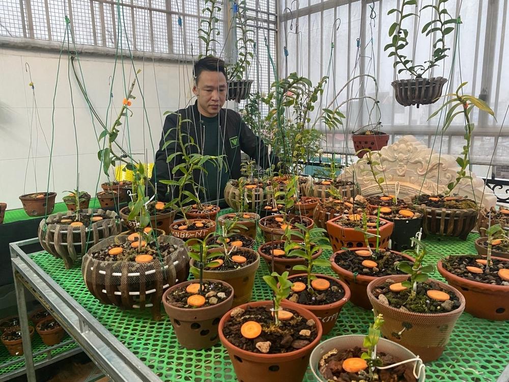 Nguyễn Văn Mạnh: thành công cùng những vườn lan đột biến