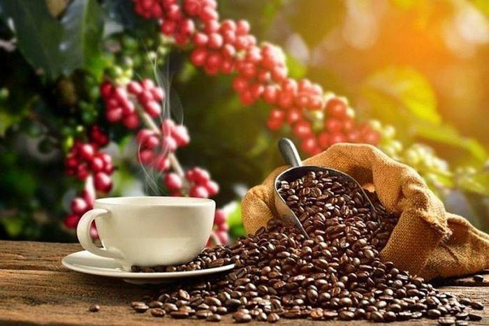 Cà phê trượt giá, mất mốc 1.400 USD/tấn