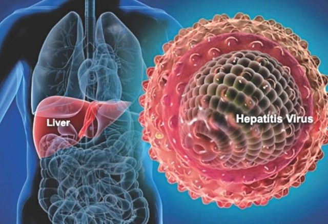 Cách phòng ngừa ung thư gan hiệu quả