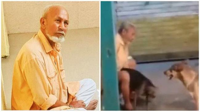 """Cụ ông 67 tuổi bị bắt vì """"cưỡng hiếp"""" 30 con chó hoang bằng thủ đoạn không ai ngờ, lời chống chế càng kinh tởm hơn"""
