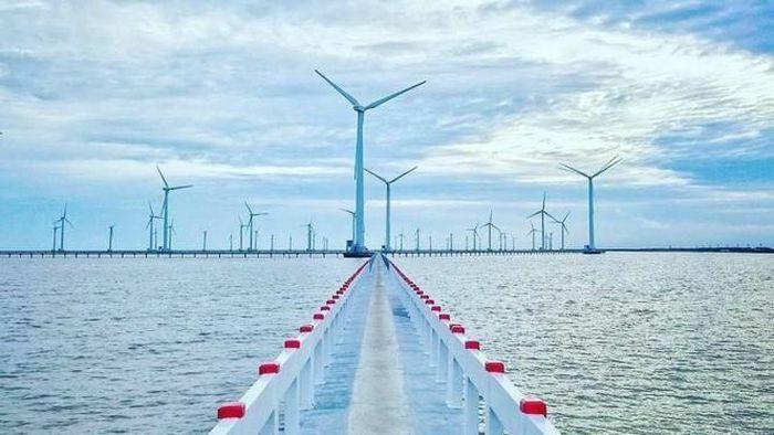 """Asiapetro, Novasia Energy – những cái tên """"lạ"""" tại dự án điện gió La Gàn 10 tỉ USD"""