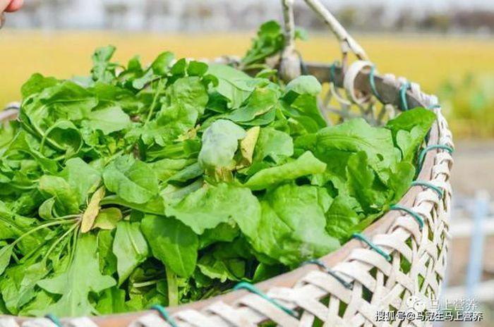 Mặt trái của rau rừng ngày càng được nhiều người chuộng ăn