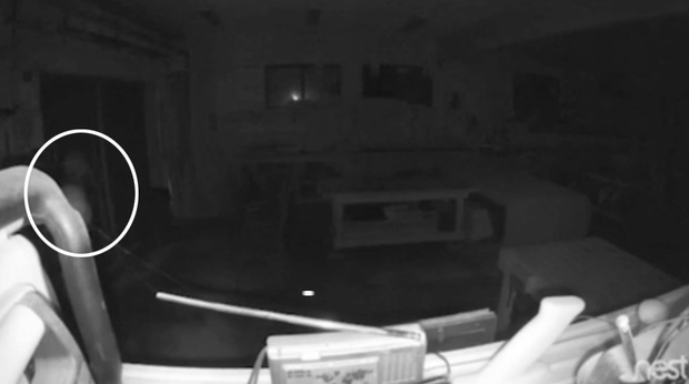 Lắp camera giám sát, chàng trai hoảng hồn khi thấy bóng ma và âm thanh lạ vào lúc 3h sáng